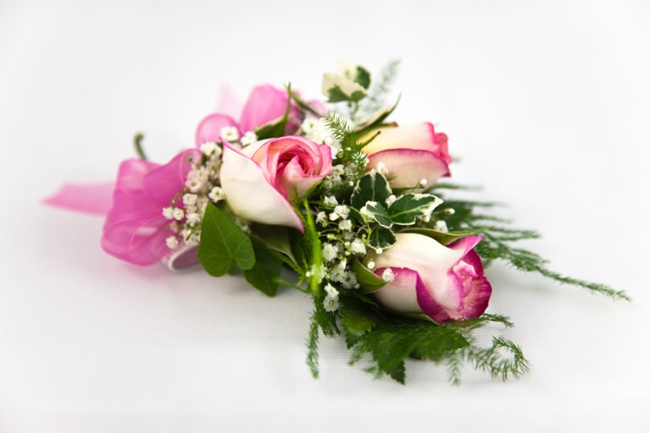 Ladybug florist your florist in toronto for flowers and gifts for